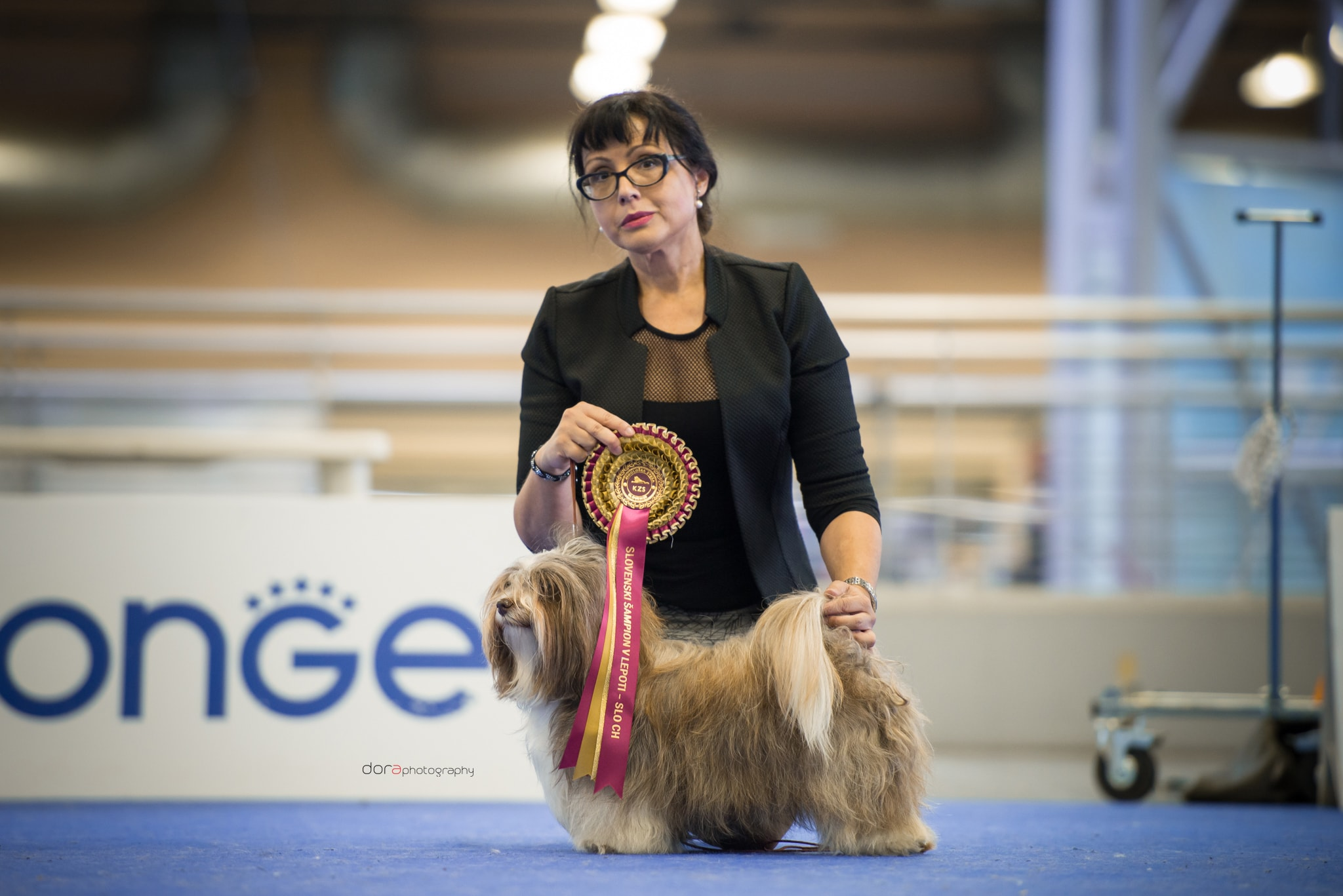Two SLOVENIAN BEAUTY CHAMPIONS – CH. SLO in Amores de Clementis Kennel