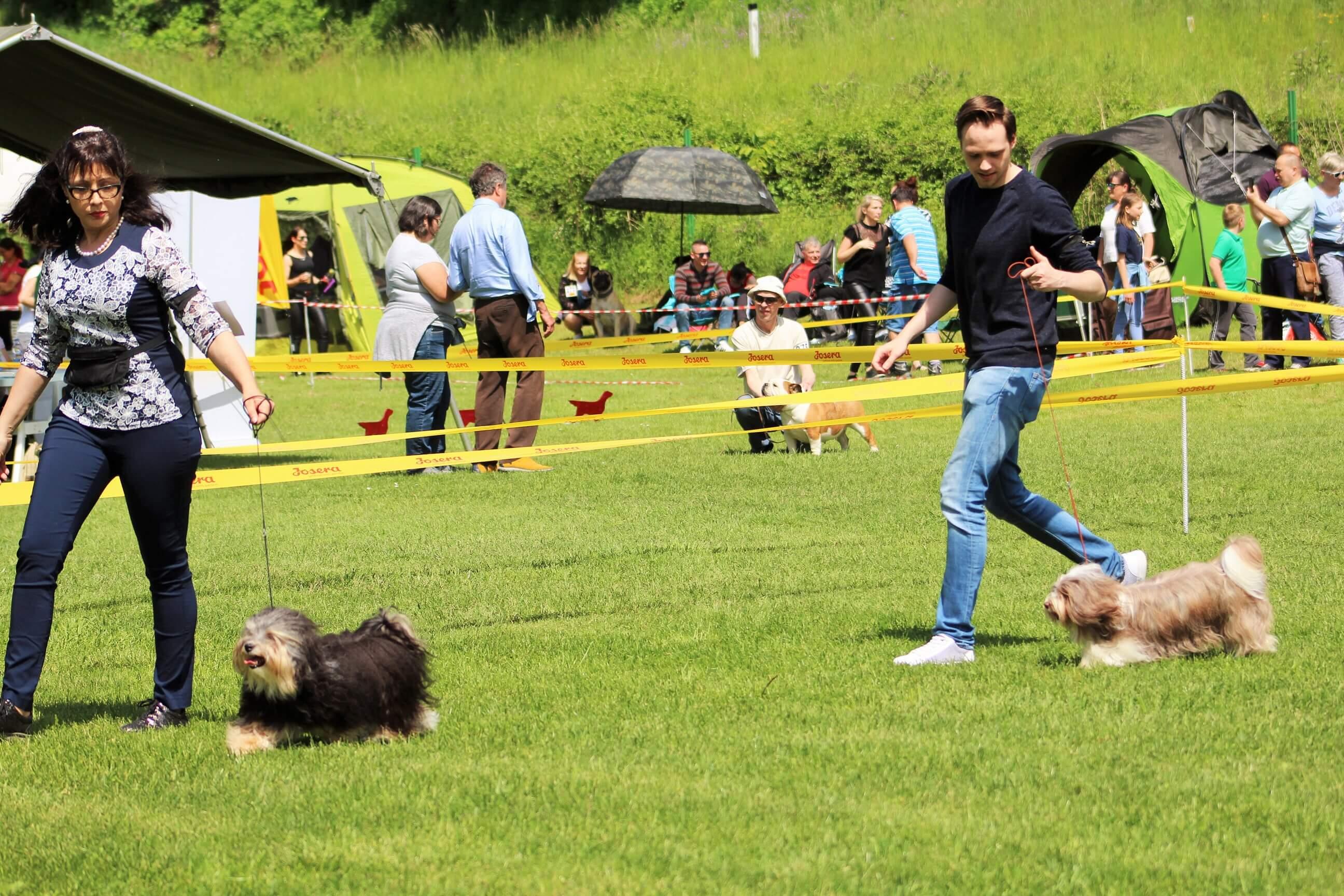 CAC Hrušica - Slovenija, 26. maj 2019